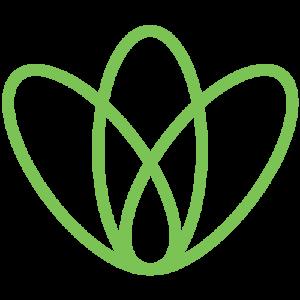 Wound Specialist Services Logo