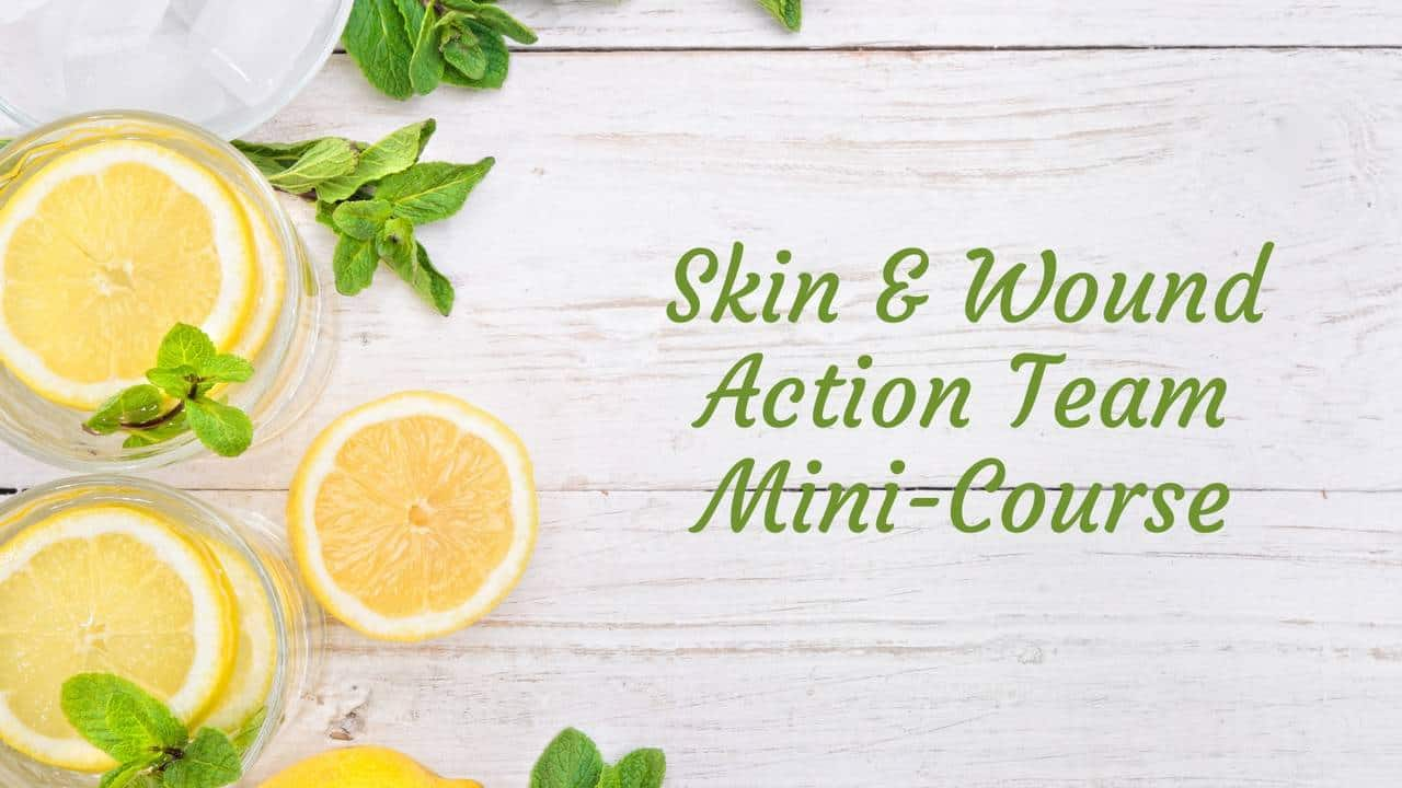 Skin & Wound Action Team Mini Course
